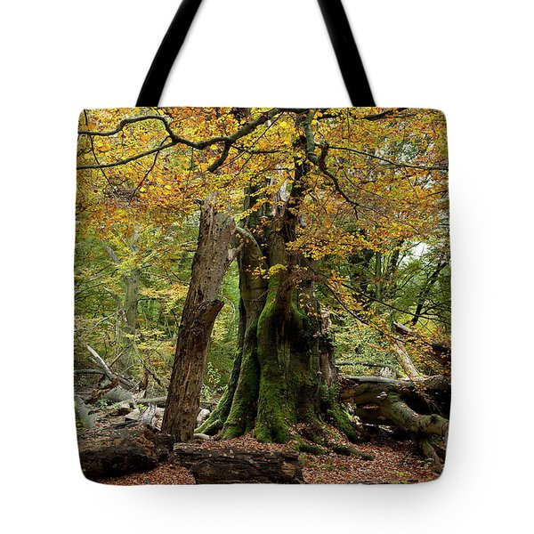 I Am Here Since Almost 1000 Years Tote Bag by Heiko Koehrer-Wagner