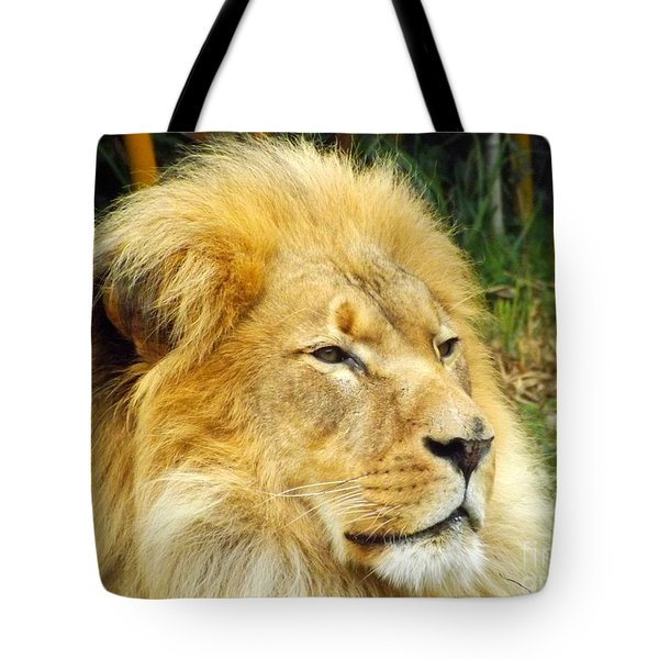 I Am King Tote Bag by Clare Bevan