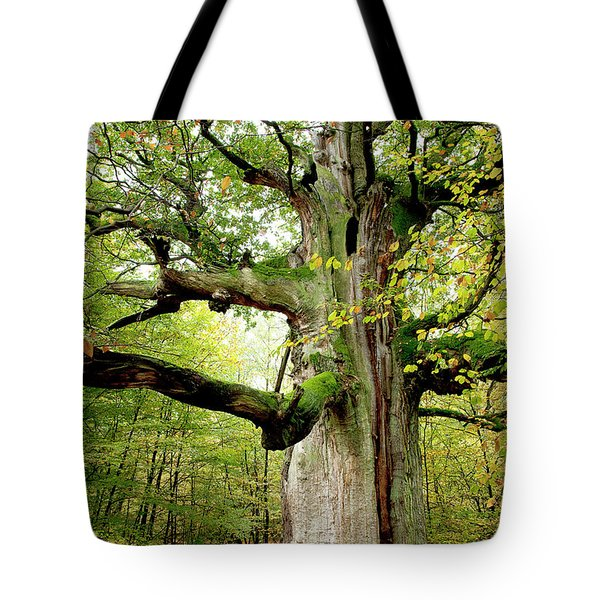 I Am Nearly 1000 Years Old Tote Bag by Heiko Koehrer-Wagner