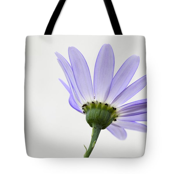 I Can Almost See Right Through You Tote Bag