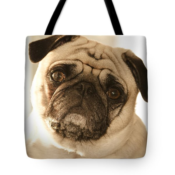 I Can Be Your Lovebug Tote Bag by Trish Tritz