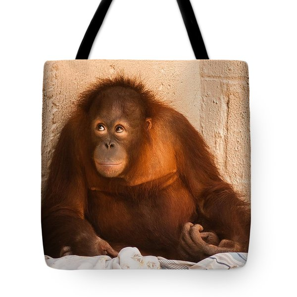 I Didn't Mean To Do It Tote Bag by Robert L Jackson