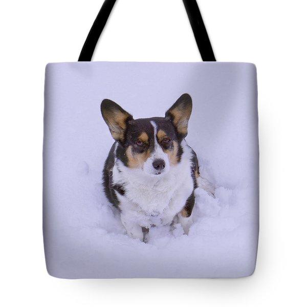 I Do Not Like Snow Tote Bag