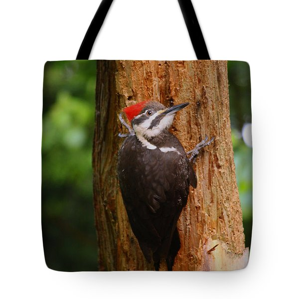 I Had To Give This Tree A Hug Tote Bag by Kym Backland