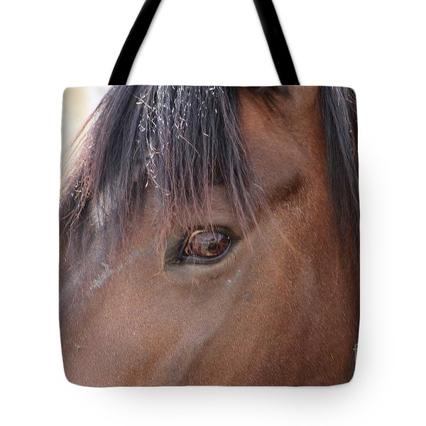 I Have My Eye On You Tote Bag by Fiona Kennard