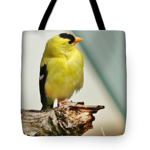 I Hear My Girl Tote Bag by VLee Watson