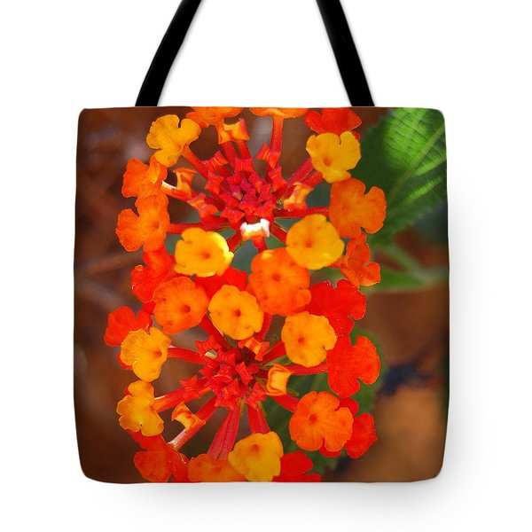 Tote Bag featuring the photograph I Love Orange by Lew Davis