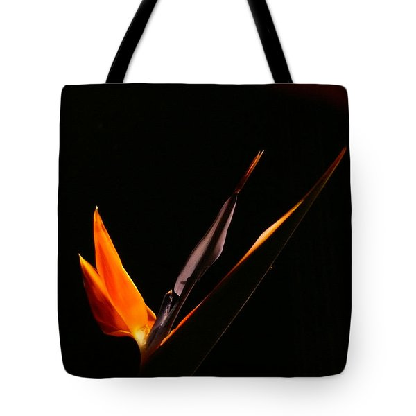 Tote Bag featuring the photograph I Love You by Evelyn Tambour