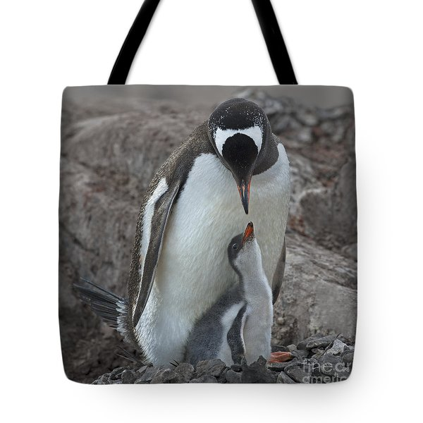 I Love You... Tote Bag by Nina Stavlund