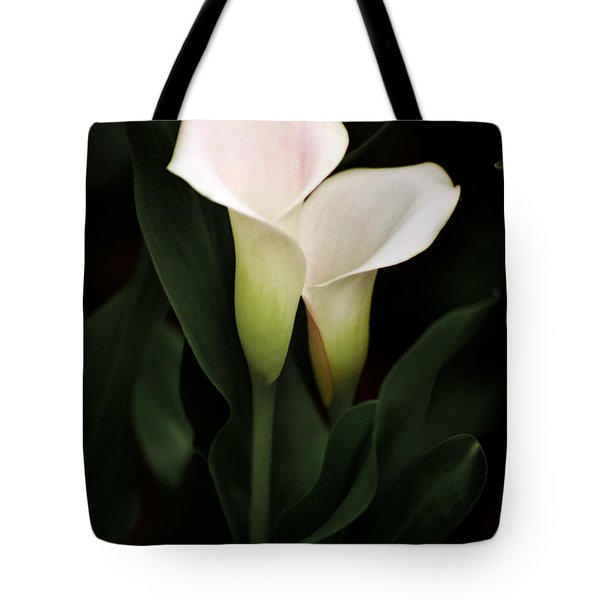 I Love You Tote Bag by Penny Lisowski