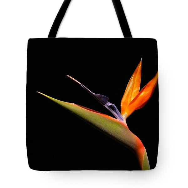 Tote Bag featuring the photograph I Love You Too by Evelyn Tambour