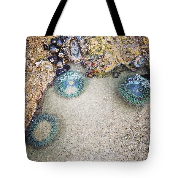 I Met Sea Anemones Tote Bag
