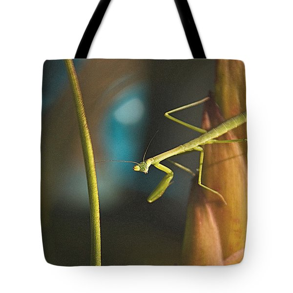 I Pray For You... Tote Bag
