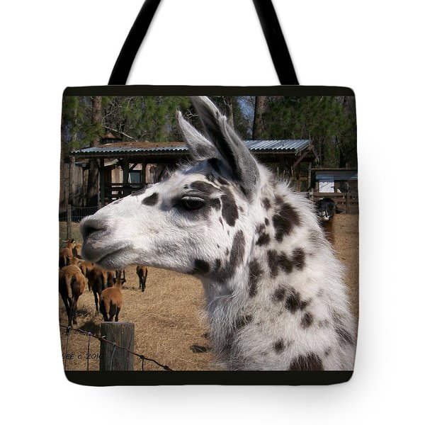 Tote Bag featuring the photograph Mad Llama Rules by Belinda Lee