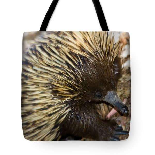 Tote Bag featuring the photograph I See Some Ants by Miroslava Jurcik