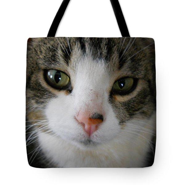 I See You Cat Tote Bag