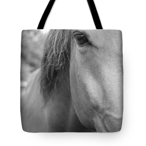 I See You Tote Bag by Jennifer Ancker