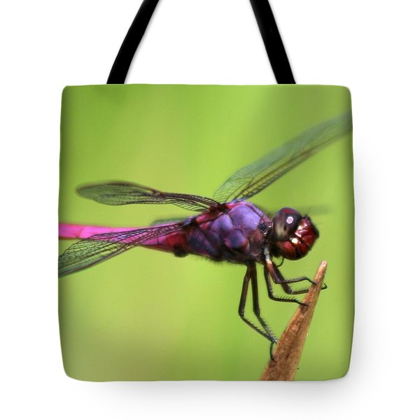 Dragonfly - I See You Tote Bag