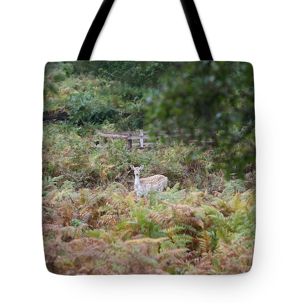 I See You Tote Bag by Mark Severn