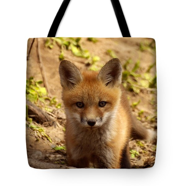 I See You Tote Bag by Thomas Young