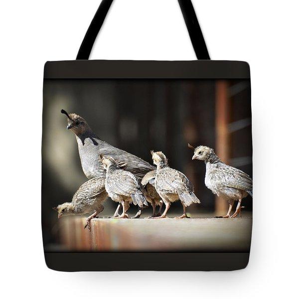 I Think I Can Fly  Tote Bag by Saija  Lehtonen