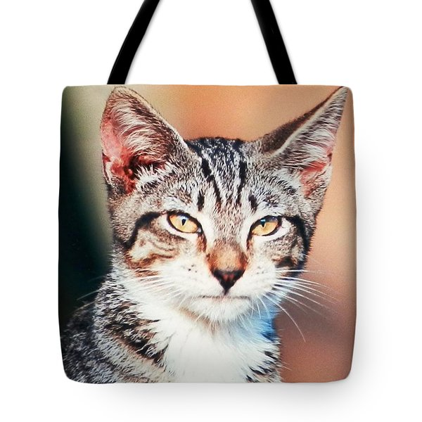 Tote Bag featuring the photograph Catitude by Belinda Lee