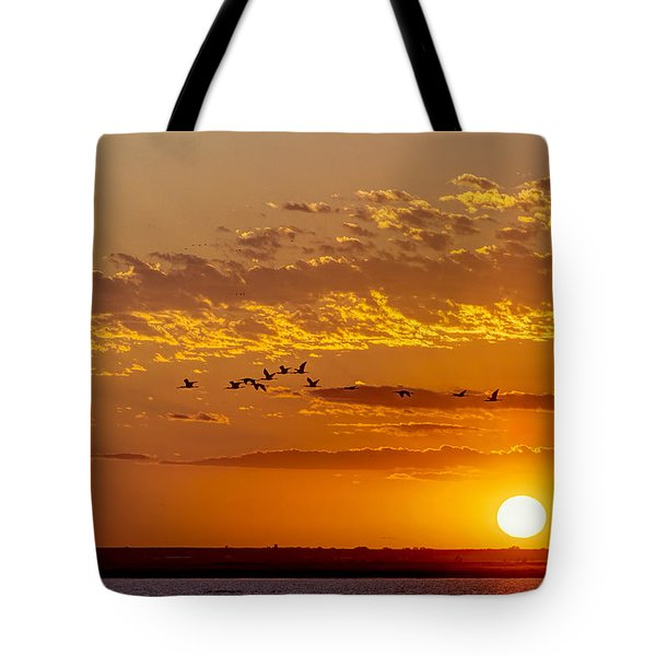 Tote Bag featuring the photograph Ibis Flyover At Sunset by Rob Graham