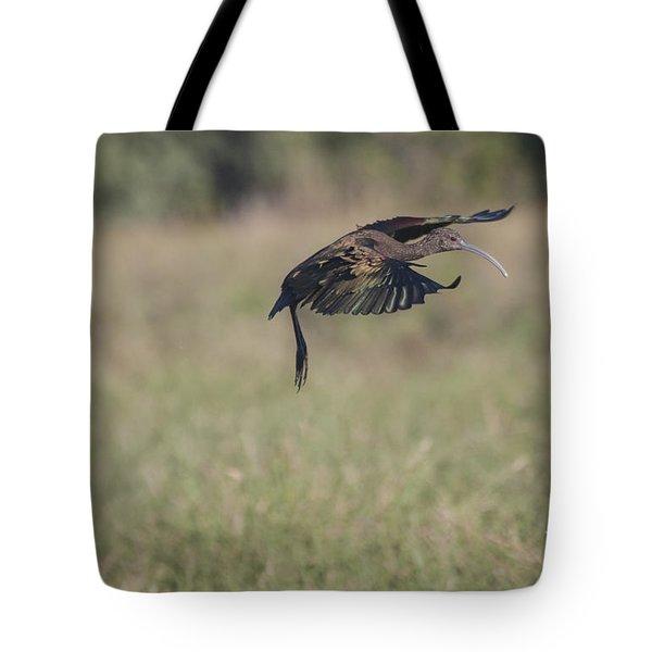Ibis In Flight Tote Bag