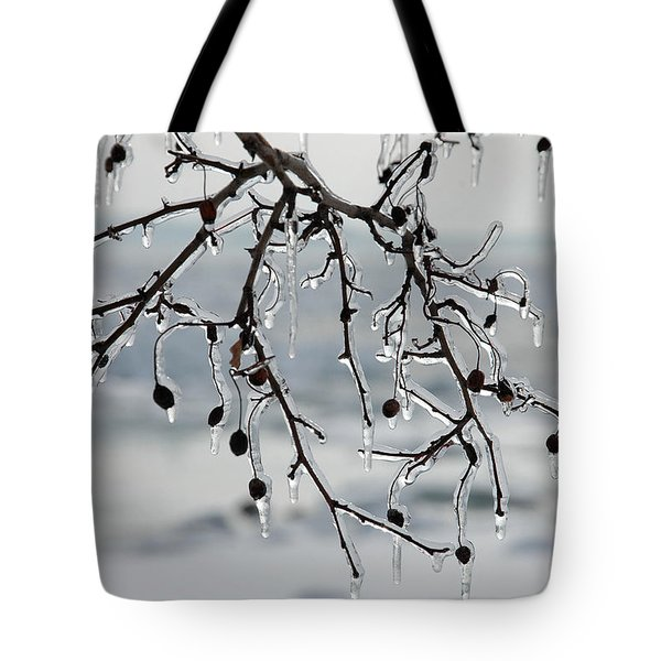 Tote Bag featuring the photograph Ice Art by Randi Grace Nilsberg