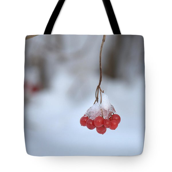 Tote Bag featuring the photograph Ice Berries by Sabine Edrissi