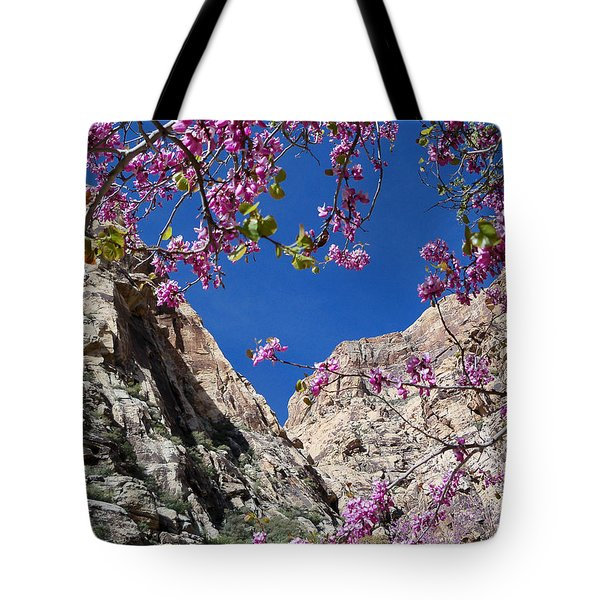 Ice Box Canyon In April Tote Bag