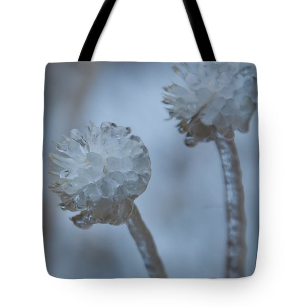 Ice-covered Winter Flowers With Blue Background Tote Bag
