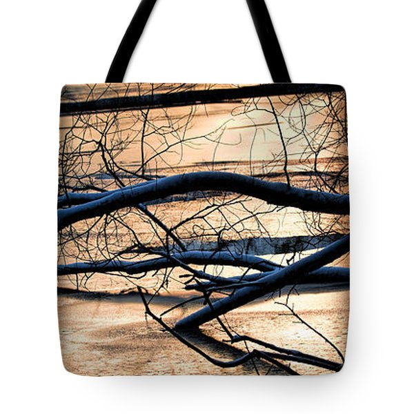 Ice Reflection  Leif Sohlman Tote Bag by Leif Sohlman