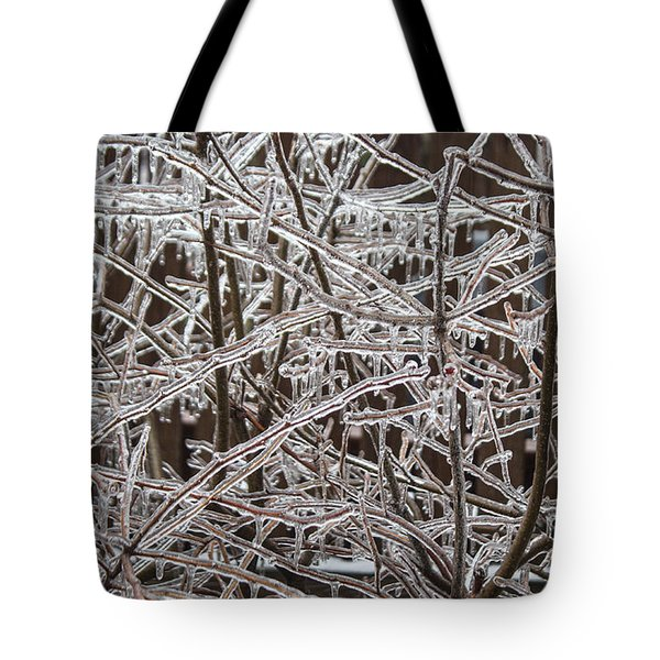 Ice Storm Tote Bag by Arlene Carmel