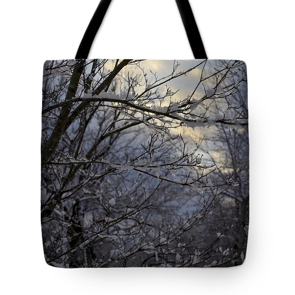 Winter's Embrace Tote Bag