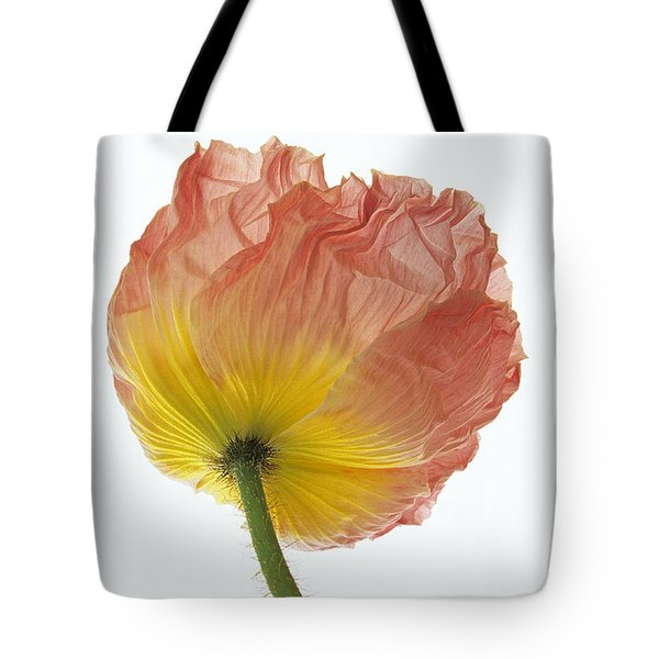 Tote Bag featuring the photograph Iceland Poppy 1 by Susan Rovira