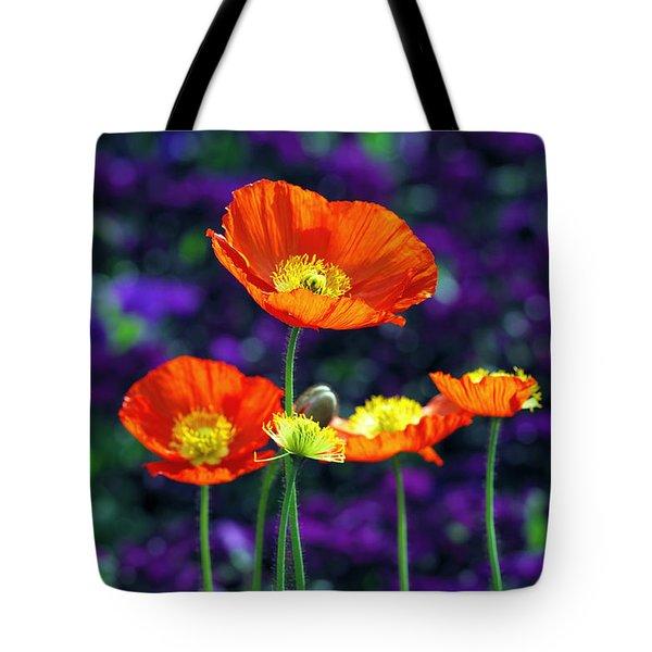 Iceland Poppy Tote Bag