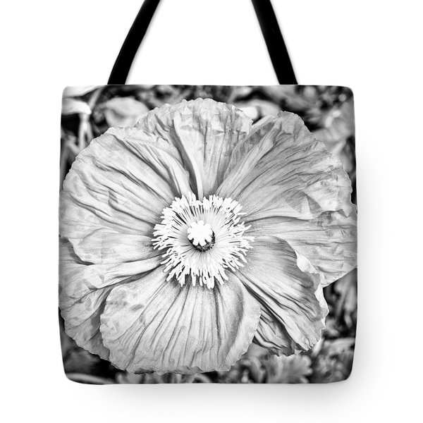 Iceland Poppy In Black And White Tote Bag