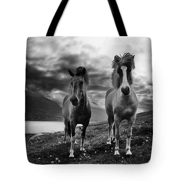 Tote Bag featuring the photograph Icelandic Horses by Frodi Brinks
