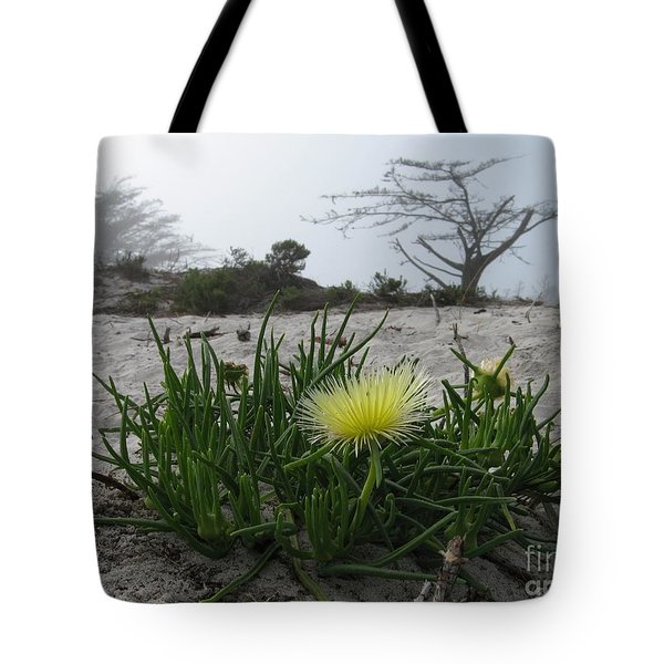 Iceplant Bloom On Carmel Dunes Tote Bag