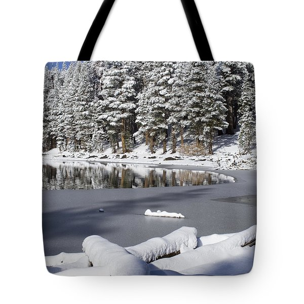Icy Cold Tote Bag by Chris Brannen