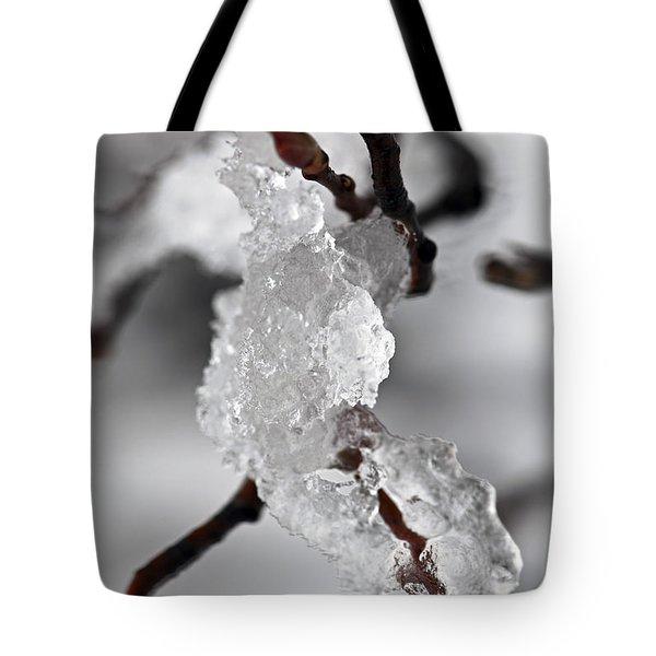 Icy Elegance Tote Bag by Elena Elisseeva