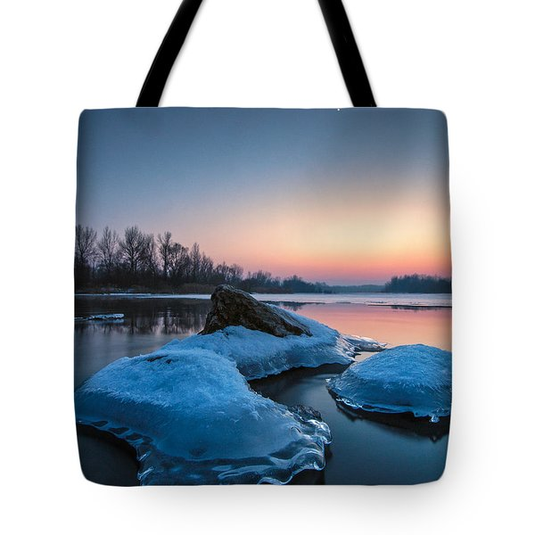 Icy Jellyfish Tote Bag by Davorin Mance