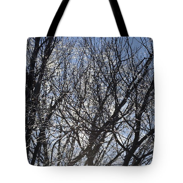 Icy Trees  Tote Bag by Luther   Fine Art