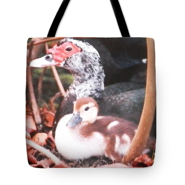 Tote Bag featuring the photograph Mother And Baby Duckling by Belinda Lee