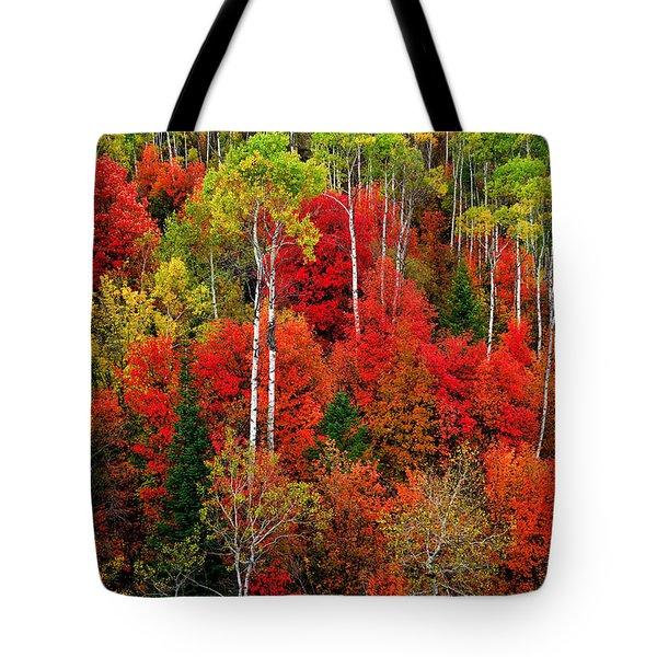 Idaho Autumn Tote Bag
