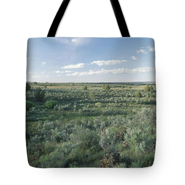 Idaho Sagebrush Steppe Tote Bag