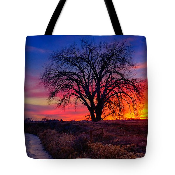 Tote Bag featuring the photograph Idaho Winter Sunset by Greg Norrell