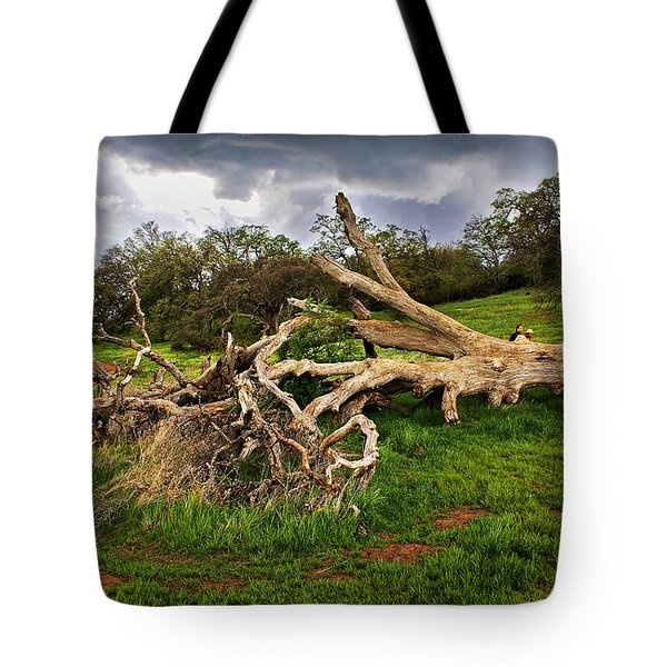 If Trees Could Talk Tote Bag