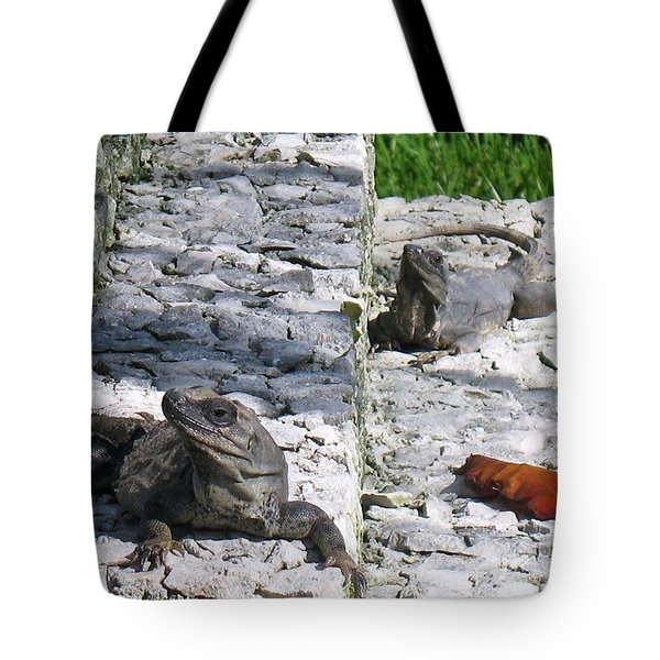 Iguana Bask In The Sun With You Tote Bag by Patti Whitten